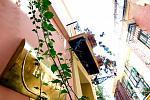 small hotel, Seville