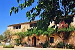 Holiday apartments in Mallorca